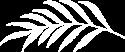 fern-white